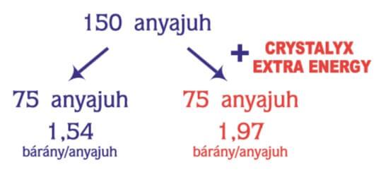 Crystalyx Extra Energy juh kísérlet - Impavidus Trade Zrt