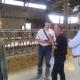 francia tejfarm
