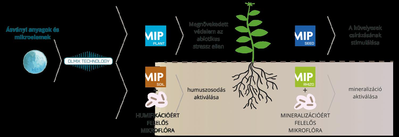MIP technológiák