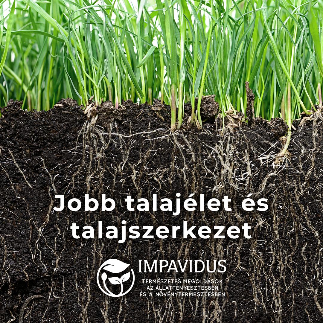 takarmánynövények talaj