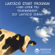 Szarvasmarha laktáció start program