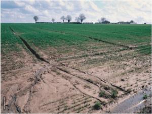 Talajjavítás erózió