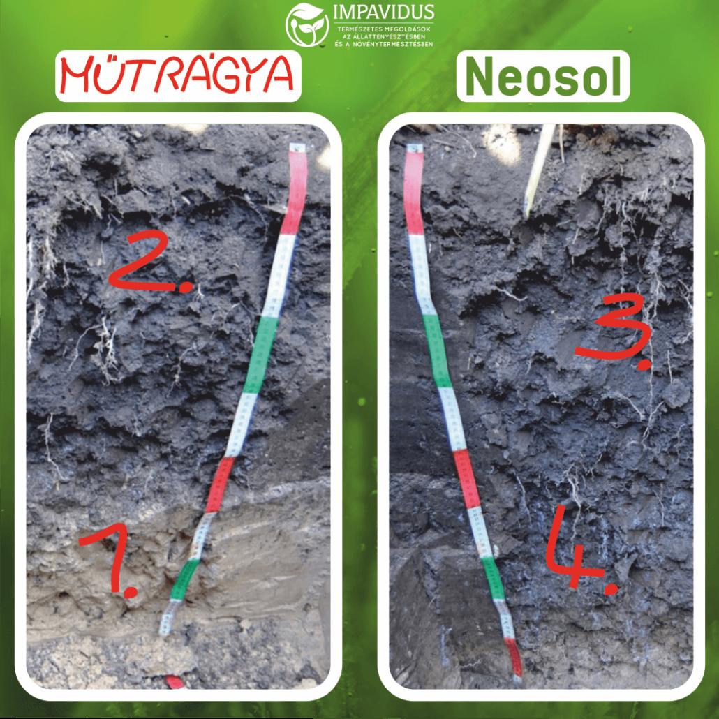 Talajjavítás Neosol